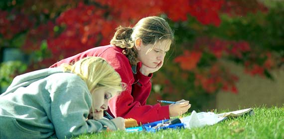 Students studying outside by the Medical School.