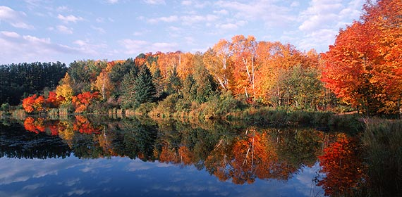 Bagley Lake on UMD's campus offers a beautiful view of fall colors.