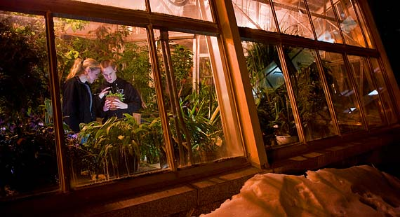 Students find an indoor oasis with lush plants and flowers in each of UMD's two greenhouses.