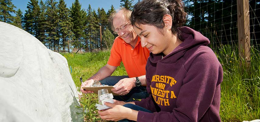 Invasive species. Goldenrod. Wild Rice. Fish. Insects. UMD professors, graduate students, and undergraduate students conduct scientific research at the UMD farm.