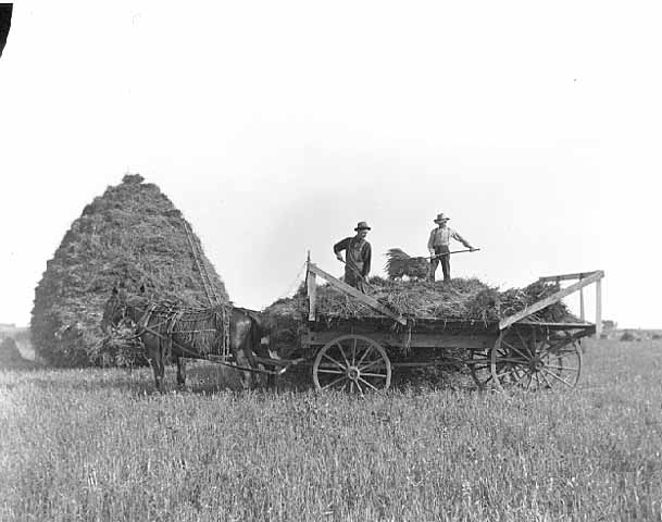 Hay stack and wagon.