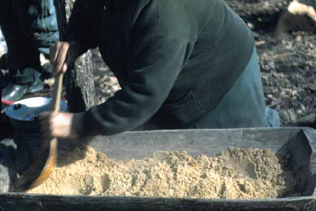 Mrs. Day Granulating Maple Sugar, Lake Mille Lacs, 1948