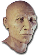 Reconstruction of Kennewick Man.