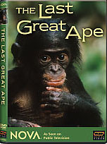 The Last Great Ape video