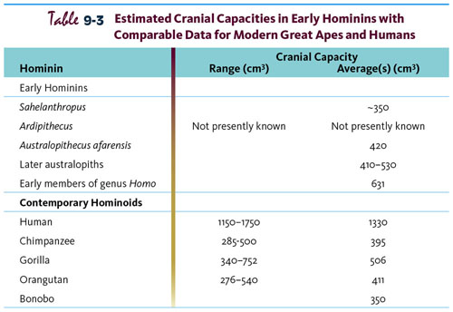 Table 9-3 estimated Cranial Capacities in Early Hominins with Comparable Data for Modern Great Apes and Humans.