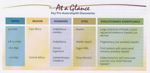 Key Pre-Australopith Discoveries.