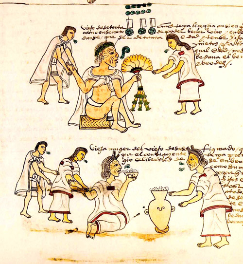 the aztec indians essay Other aztec city states likewise came to be governed as indian republics with a local in his essay symbolism of the templo mayor, posits that the.