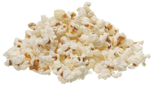 Popcorn Kernel Outline Popcorn: a symposium