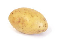 Yukon Gold potato.