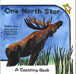one north star a counting book