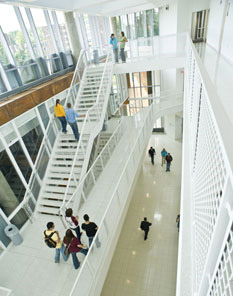 LSBE view from upper level down on students below