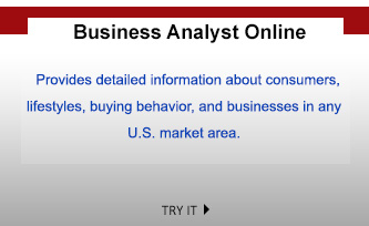 Business Analyst Online